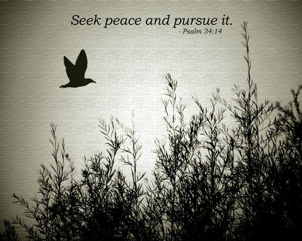 Seek Peace and Pursue it - Milwaukee Community Journal