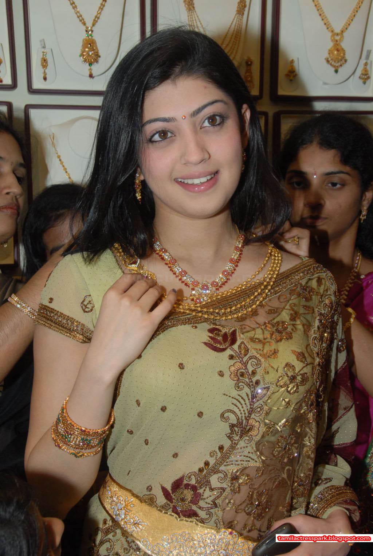 indian actress south indian actress pranitha subhash hot