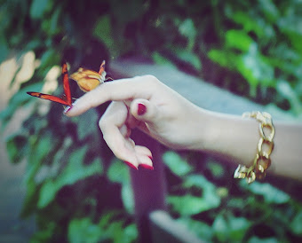 La felicidad es como una mariposa, cuanto mas la persigues mas se aleja...