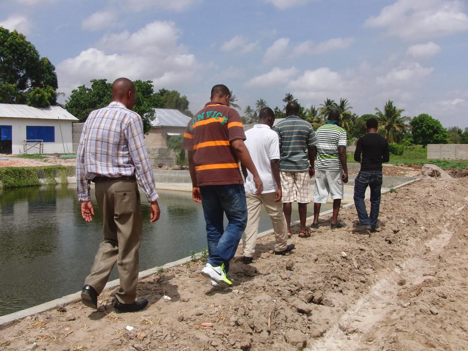 New year 2014 visit at eden fish farm amisodago for Fish farm 3