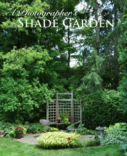 A Photographer's Shade Garden