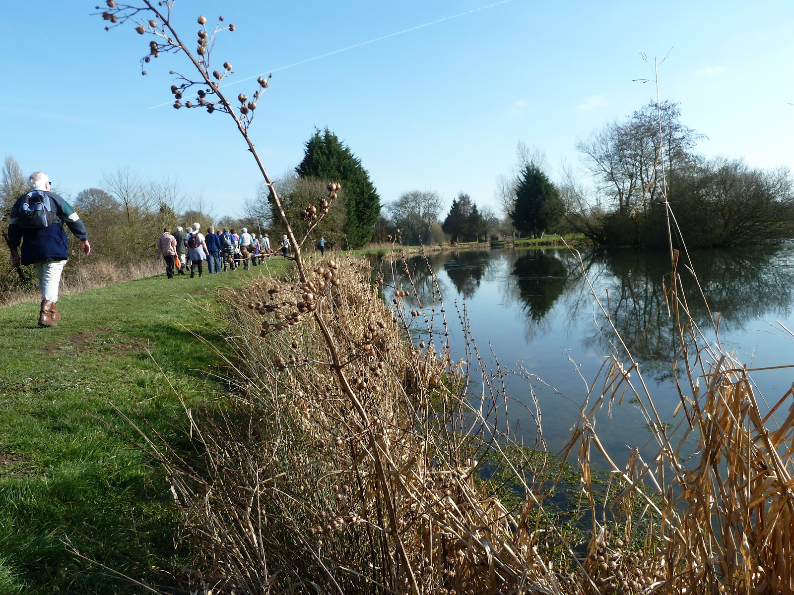 Devizes days in words and pictures 2015 a flat six miler for Fish farm missouri