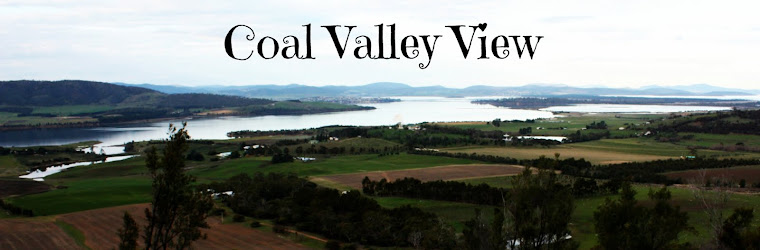 Coal Valley View