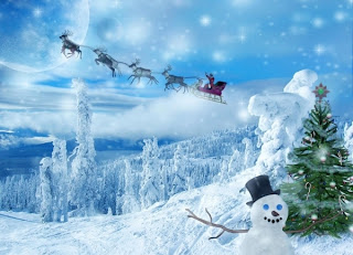 3d Christmas Night santa  wallpapers