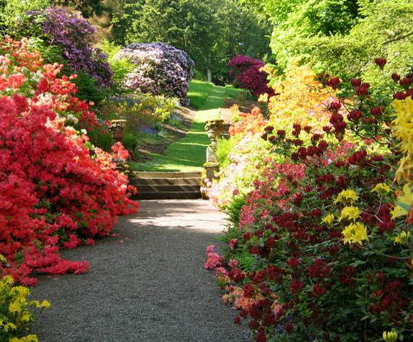 14 beautiful and dashing spring season wallpapers in hd