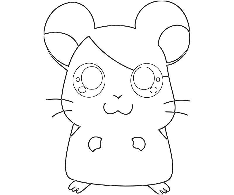 printable-hamtaro-ham-hams-unite-hamtaro-profil-coloring-pages
