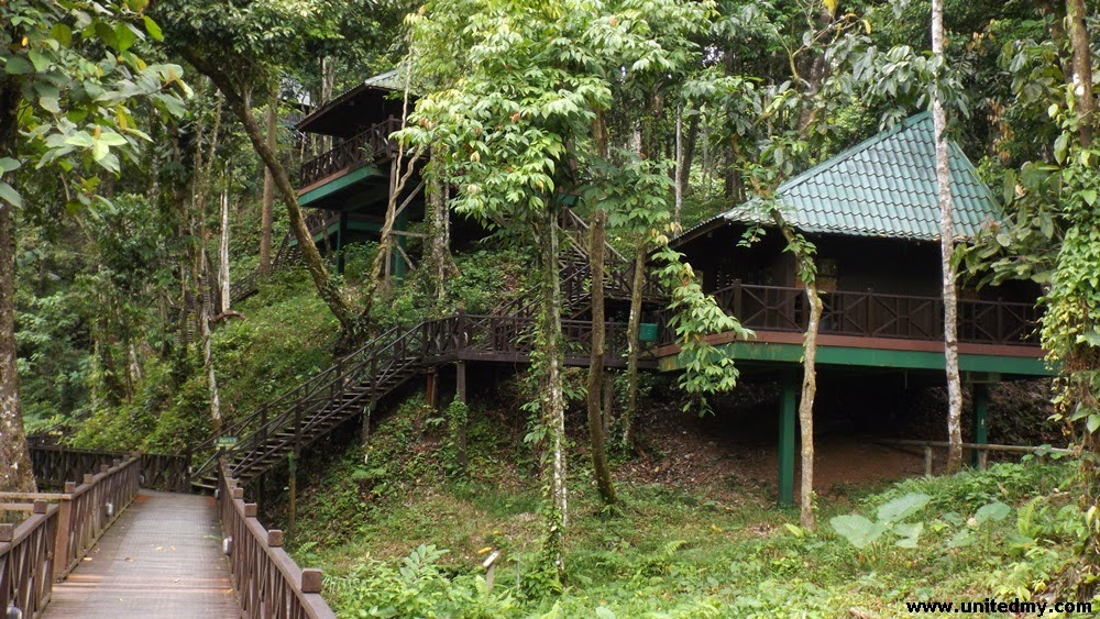 Tabin Wildlife Reserve Hill lodge