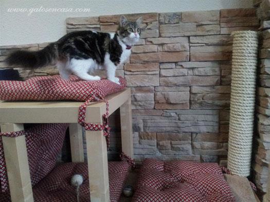 Maravillosa cama rascador con dos mesas de ikea - Mueble arenero para gatos ...