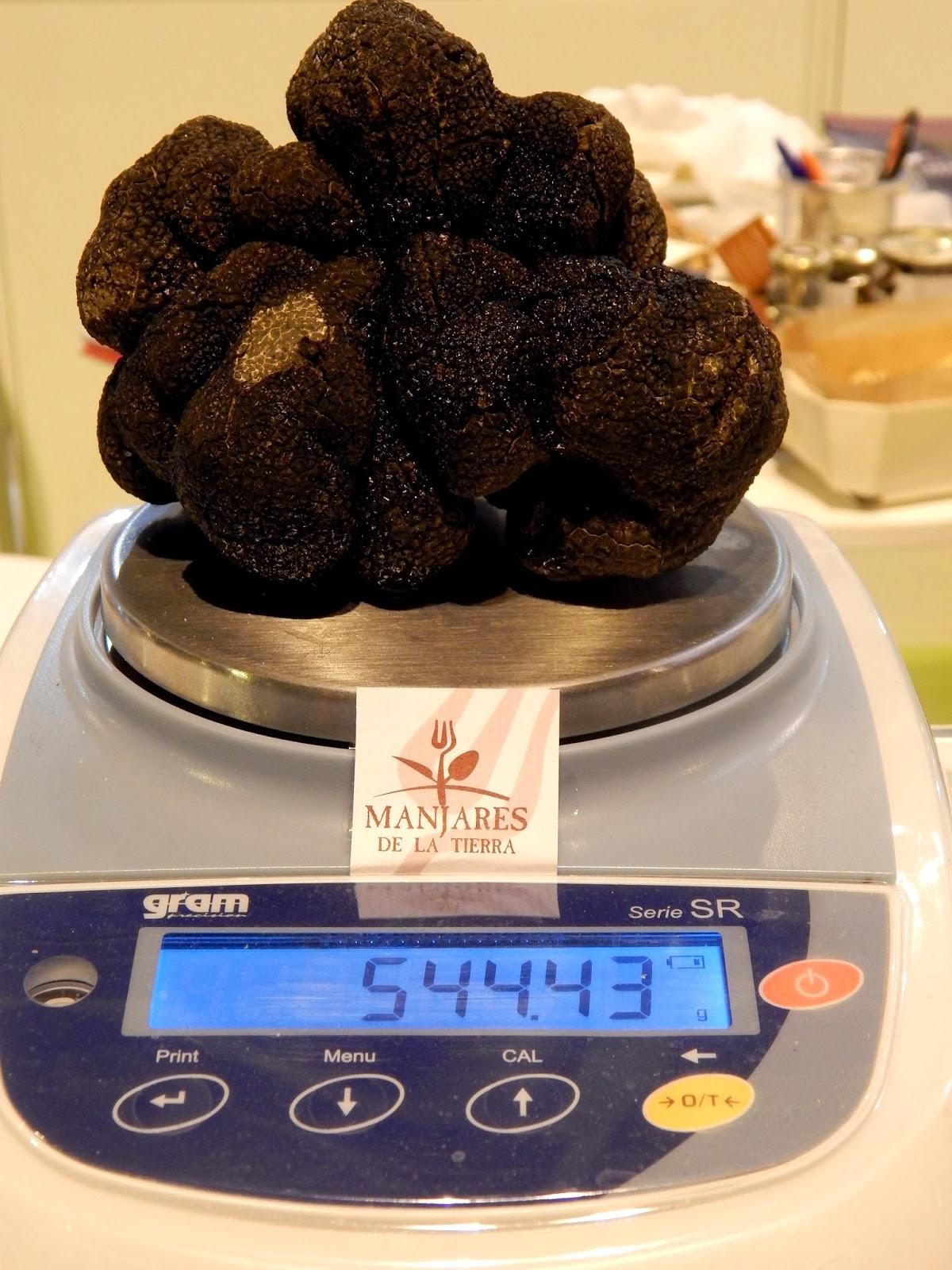 Salon del Gourmet IFEMA Trufa Negra