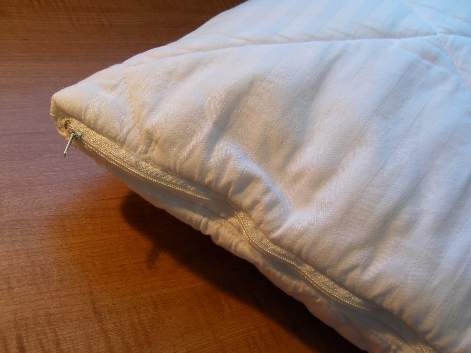 Dust mites on pillows - photo#4