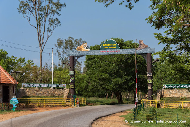 Entrance Arch in Bandipur Tiger Reserve