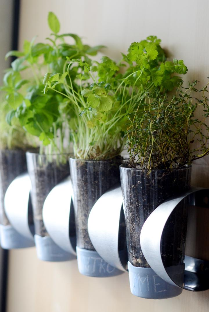 Diy herb garden ikea hack design fixation for Garden design hacks