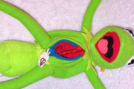 Brinquedos esquisitos bebê gravido