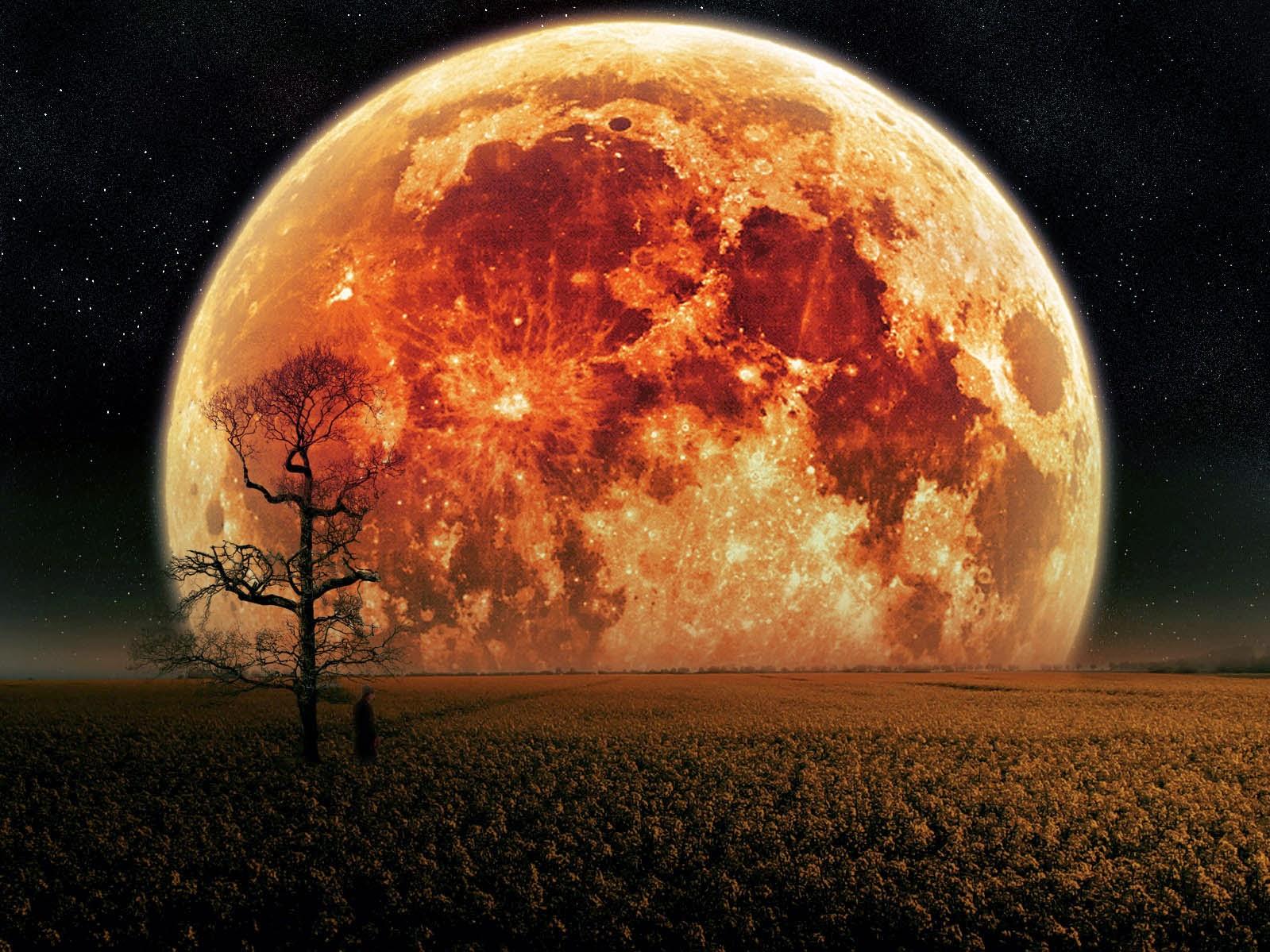La influencia de la Luna Llena en el comportamiento humano