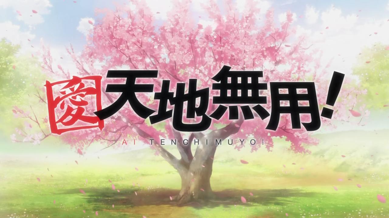 My Shiny Toy Robots: Anime REVIEW: Ai Tenchi Muyo!