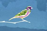 Umar Dan Burung Pipit