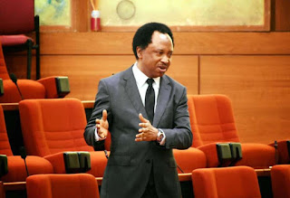 New Minimum Wage: Shehu Sani reacts to Governors' inability to pay N30,000 salary
