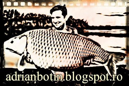adrianbotin.blogspot.ro