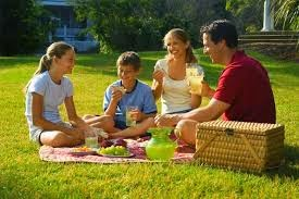 Вкусный и полезный пикник