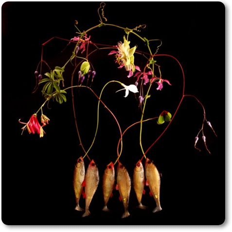 annorlunda blomsterkonst