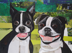 Meet the Bostons - Ivy and Molly by Megan Coyle