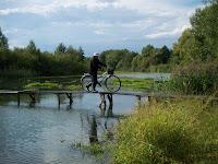 Из деревенской жизни: На мосту