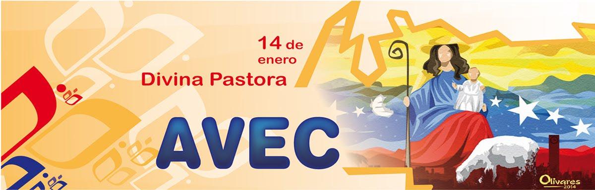 Asociación Venezolana de Educación Católica