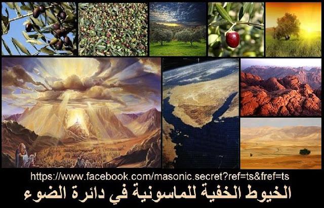 سيناء..الأرض المباركة.. وصاحبة الشجرة المباركة التي لانظير لها في العالم؟