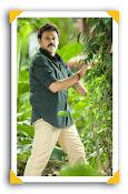 Drushyam Movie Photos Gallery-thumbnail-18