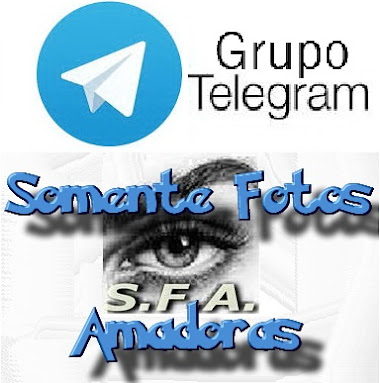 Super Grupo SFA no TeleGram