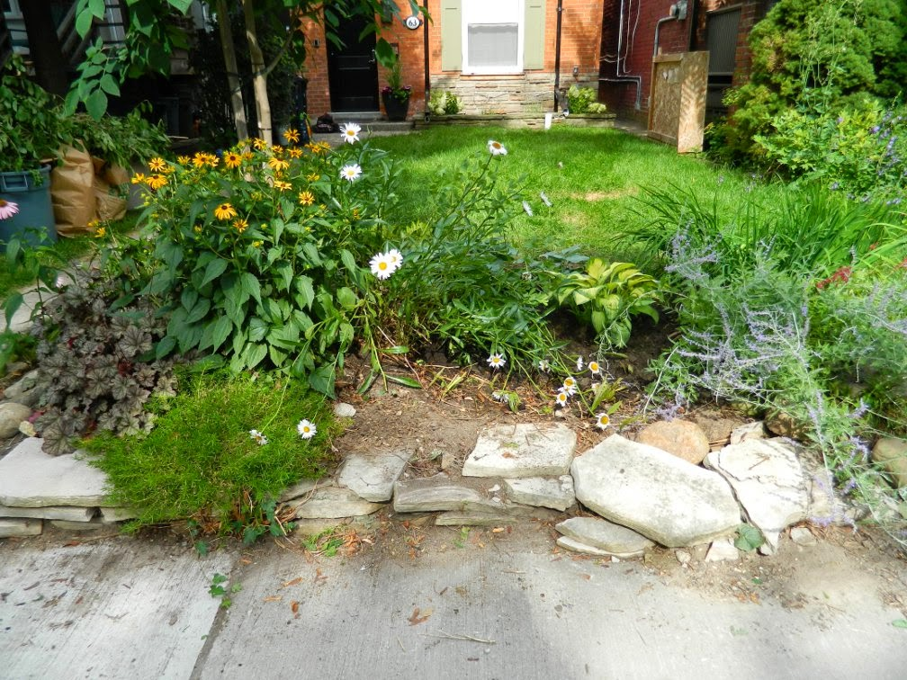 Toronto Riverdale garden cleanup Paul Jung Gardening Services after