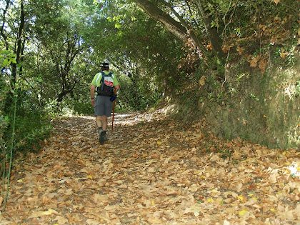 El camí a la zona del Torrent dels Verns