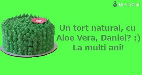 tort natural, ca Aloe Vera