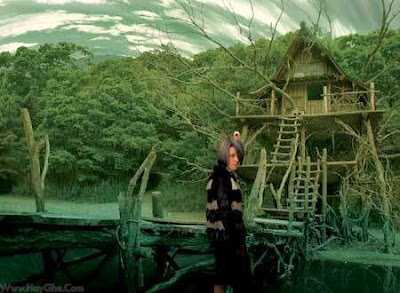 Phim ADI Ở XỨ PHÙ THỦY-adi xu phu thuy sntv