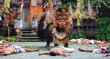 Ubud Kintamani Tours