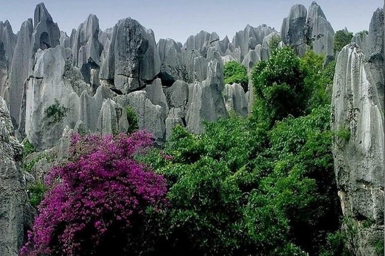 http://4.bp.blogspot.com/-mTDNSDyeI5U/Tey7aF9Al5I/AAAAAAABKe0/R6lHcQnRYmk/s1600/Stone_Forest_Nature_Photography_6.jpg
