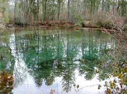 Google images for Blue fishing nj