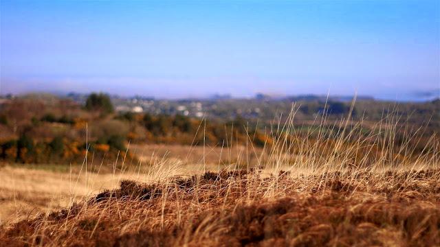 view towards Lough Corrib