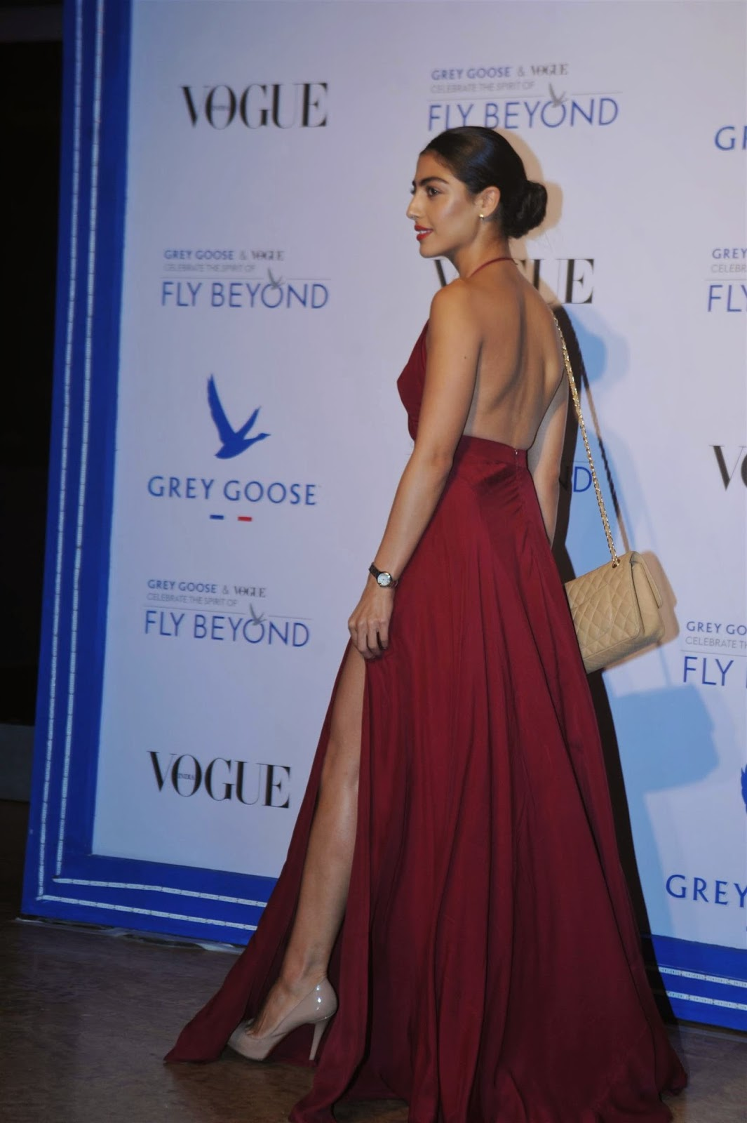 Bollywood Celebs at Grey Goose Fly Beyond Awards 2014 Pics