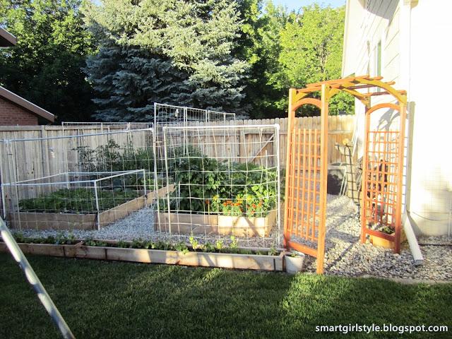 smartgirlstyle Box Vegetable Garden June Update