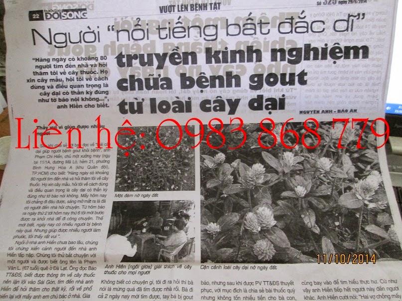 Cây nở ngày đất trên Báo Tuổi trẻ & Đời sống số 323 ngày 22/09/2014