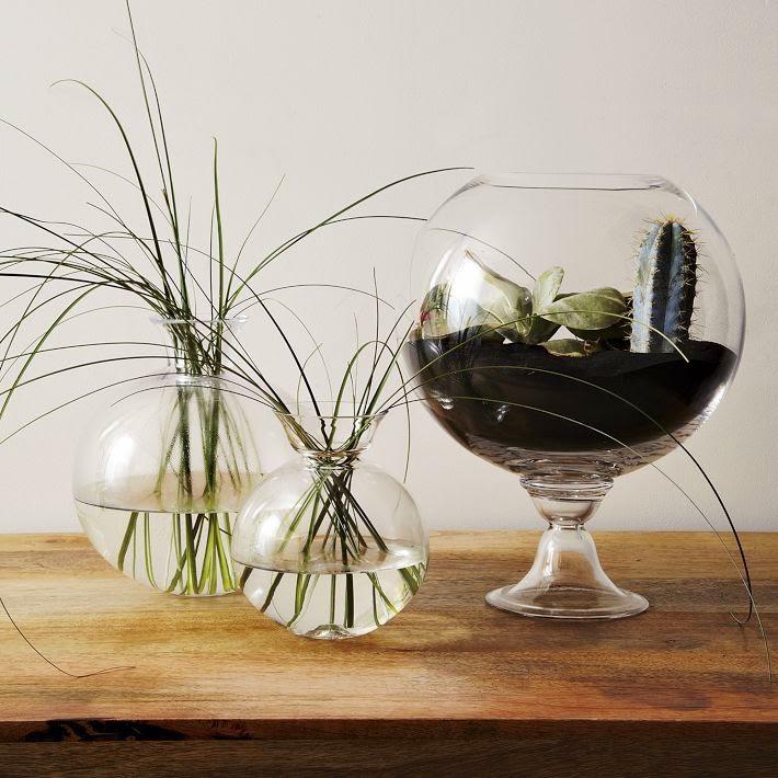 MuyVariado.com: Como Hacer un Terrario con Copas de Vidrio
