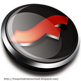 Download Flash Player Pro 5.88 Portable as Adobe flash player and manager to download flash movies