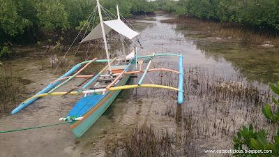 Olango Island in Cebu travel diary marine sanctuary board walk 1
