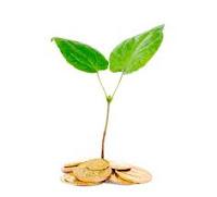 emprendimiento sustentable