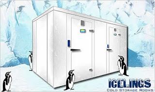 Lắp đặt kho lạnh mini - Đại Phú Thịnh