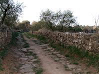 El Camí dels Calls amb els marges de pedra seca i força trams empedrats