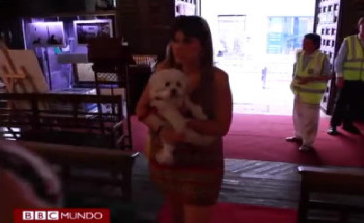Una Iglesia Don Es Permitido Llevar Mascotas Dan Refrescos Y Tiene Wifi Gratis