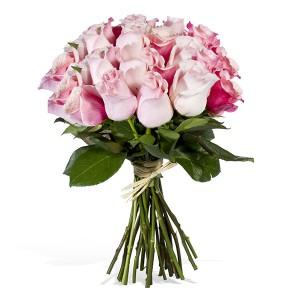 Pak, saya beli bunga ini. Dua ikatya. Satu untuk anak ini, satu lagi