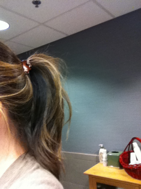 Barefoot With Champagne Product Review Ponytail Pouf Amazing Pony Pouf